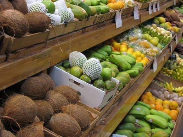 jungle jims fruit