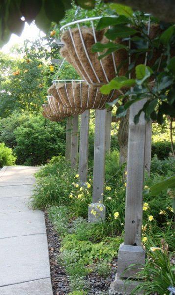 mt airy forest arboretum