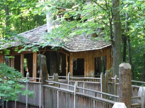 Day 95 – Mt. Airy Forest and Treehouse