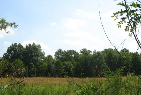 farbach-werner nature preserve and park