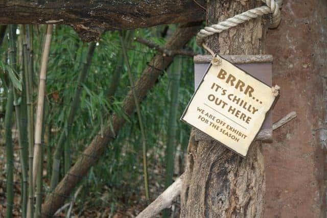 off exhibit cincinnati zoo