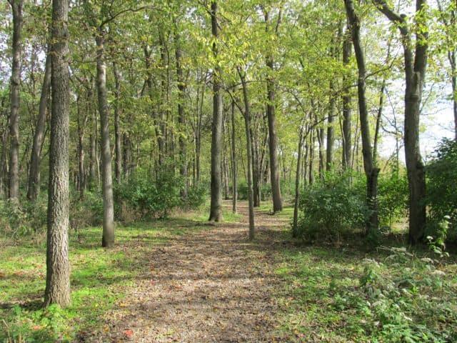 woods at heritage park colerain ohio