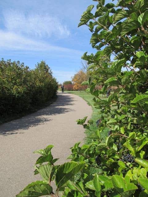 paved trails at heritage park colerain