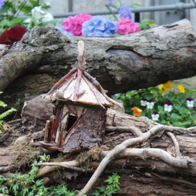 Enchanted Forest at the Krohn Conservatory