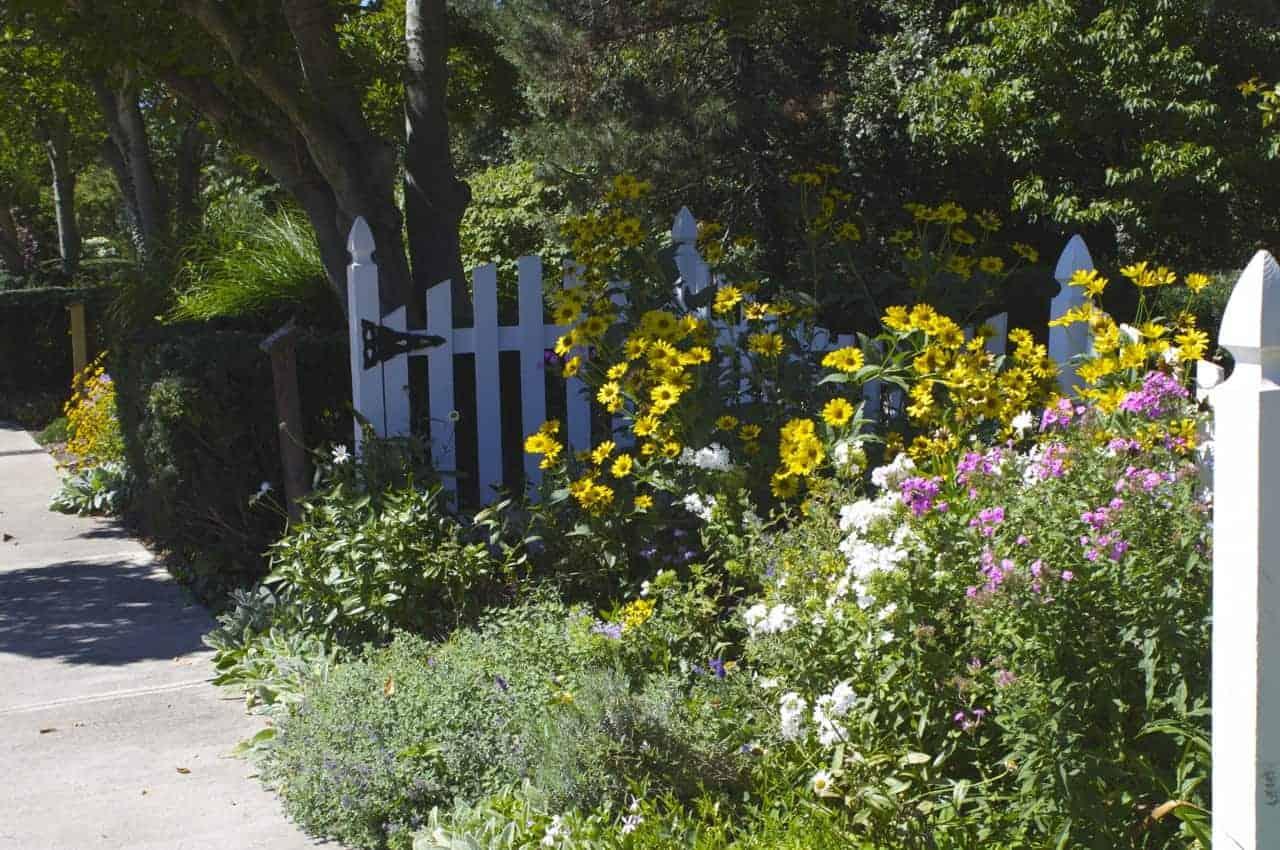 flowers in the garden at Ault Park in Cincinnati