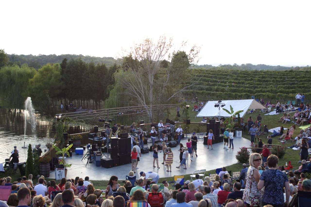 band and dancing at Vinoklet Art and Wine Festival