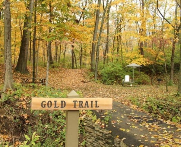 Beautiful autumn leaves on the Gold Trail at Pyramid Hill Sculpture Park