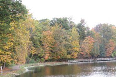 autumn at Sharon Woods