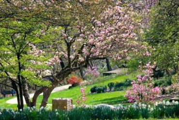 Eden Park in the Spring, Cincinnati Ohio
