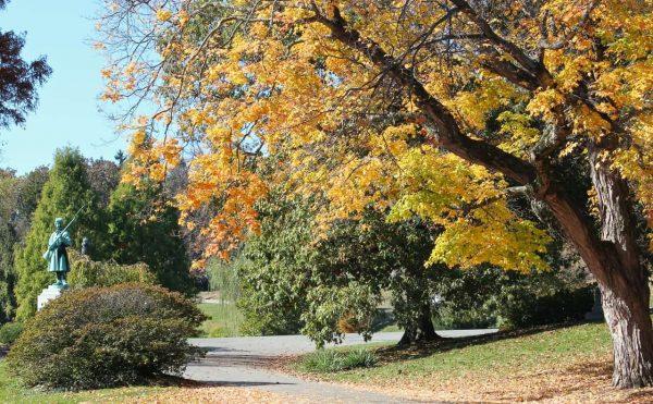 autumn in Cincinnati at Spring Grove Cemetery