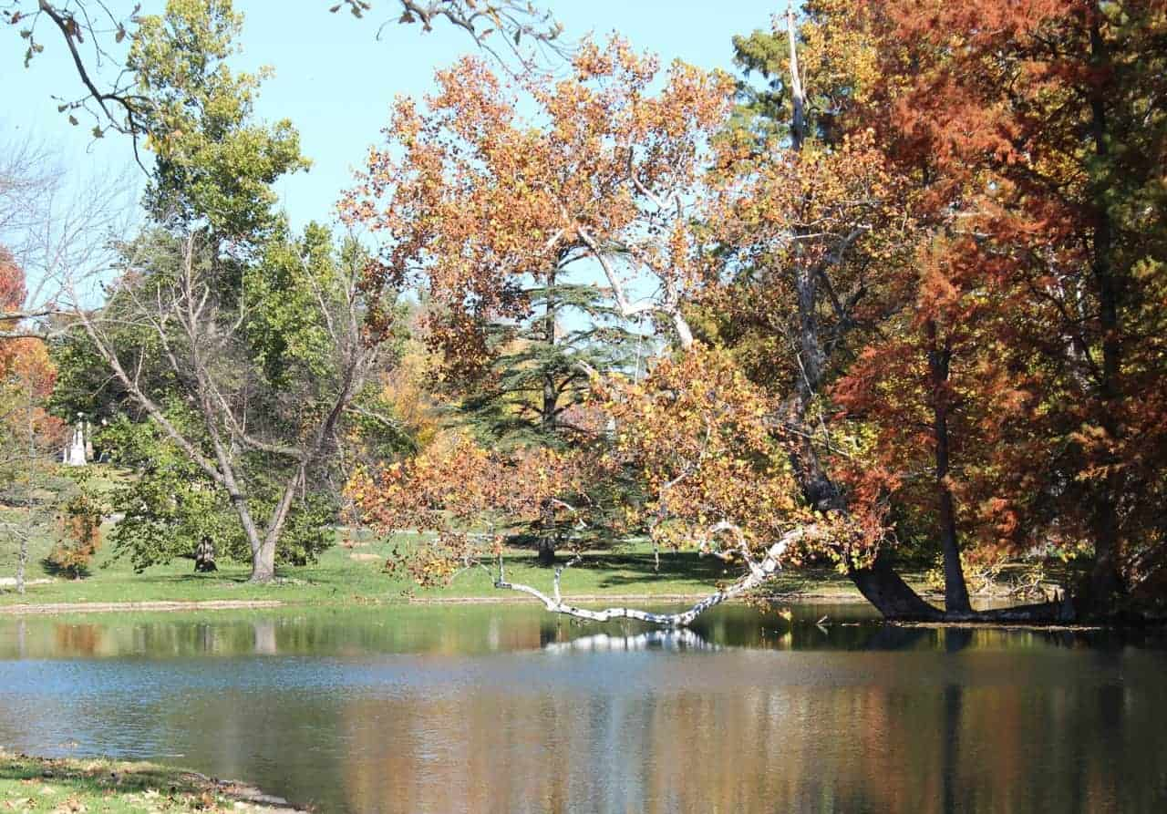 Spring Grove Cemetery lakes