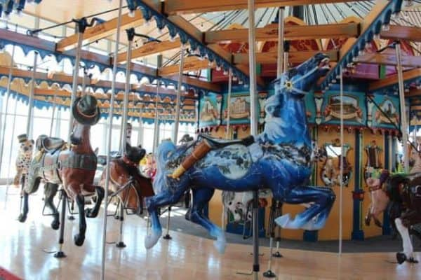 Observatory Horse at Carol Ann's Carousel