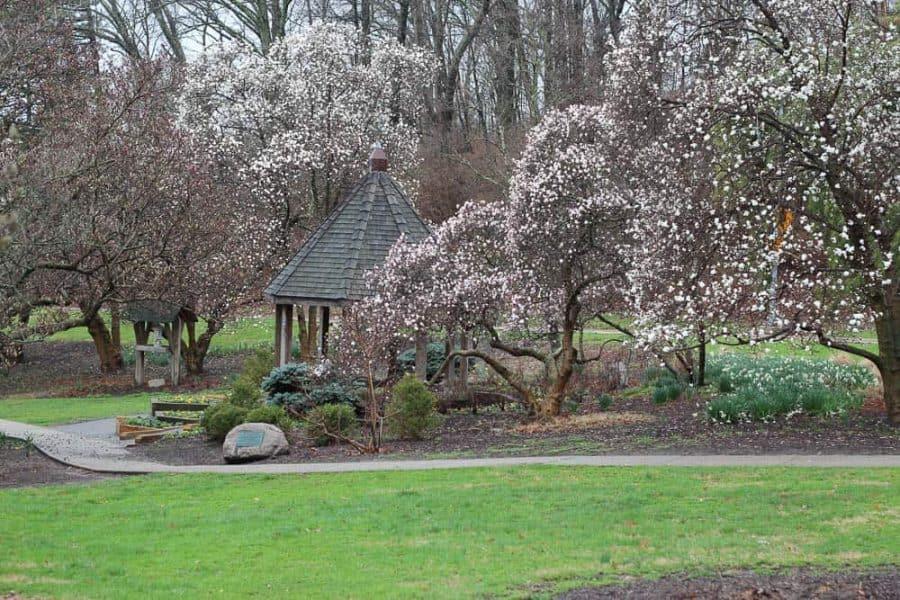 Eden Park in the Spring