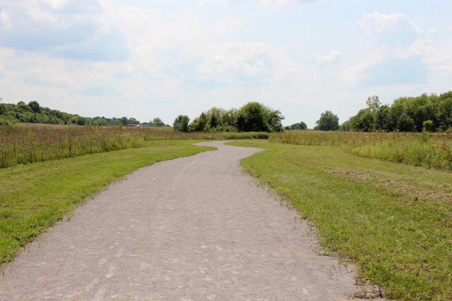 Walking trails at Summit Park in Blue Ash