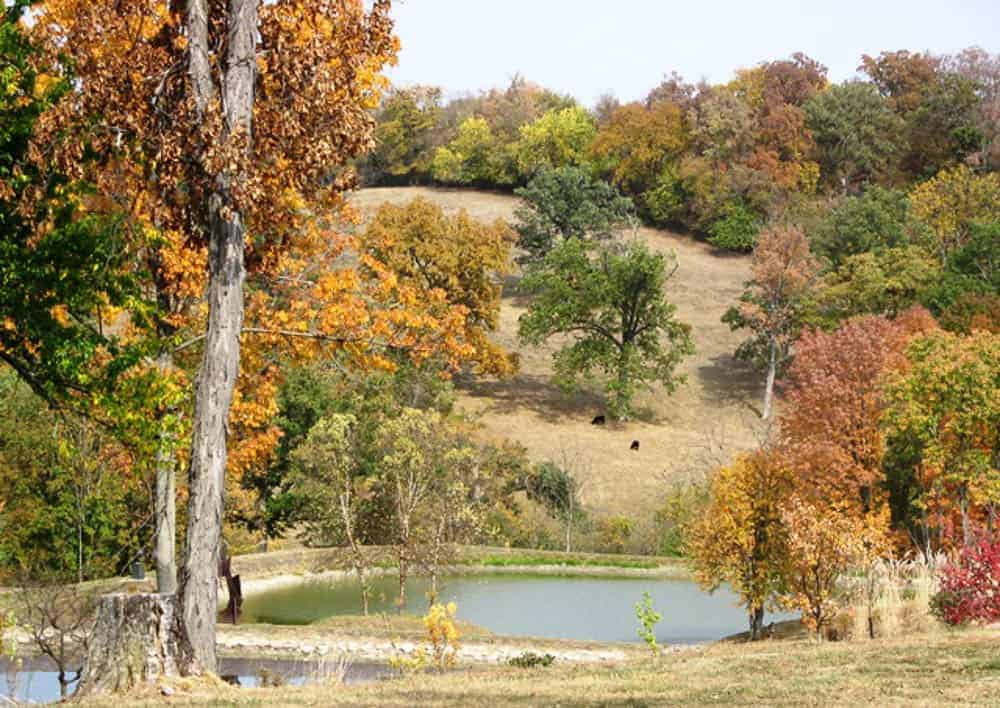 fall at Pyramid Hill Sculpture Park