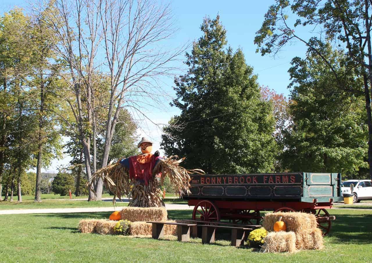 Scarecrow at Bonnybrook Farms