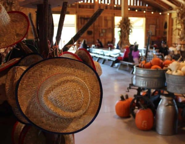 Fall Farm Days at Bonnybrook Farms