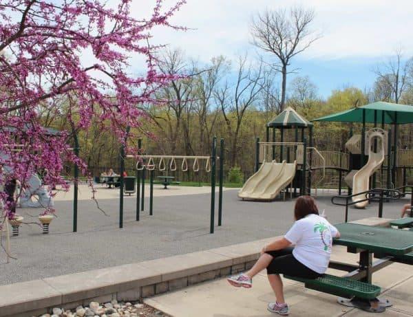Picnic Tables at Bicentennial Park in Green Township