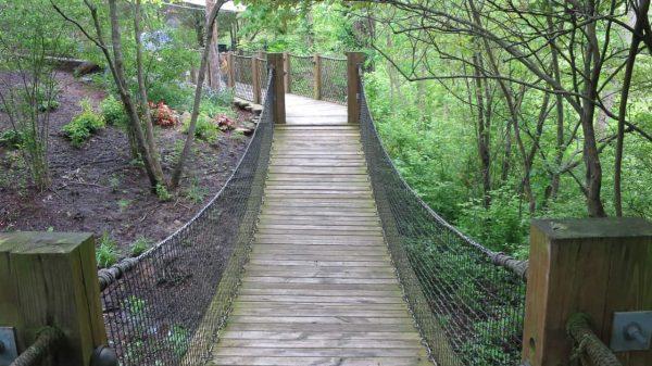 Swinging bridge at Highfield Discovery Garden
