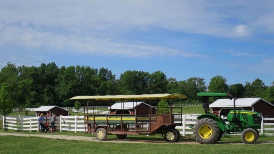 Tractor Rides at Parky's Farm