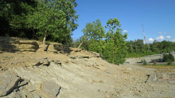 Trammel Fossil Park in Sharonville Ohio