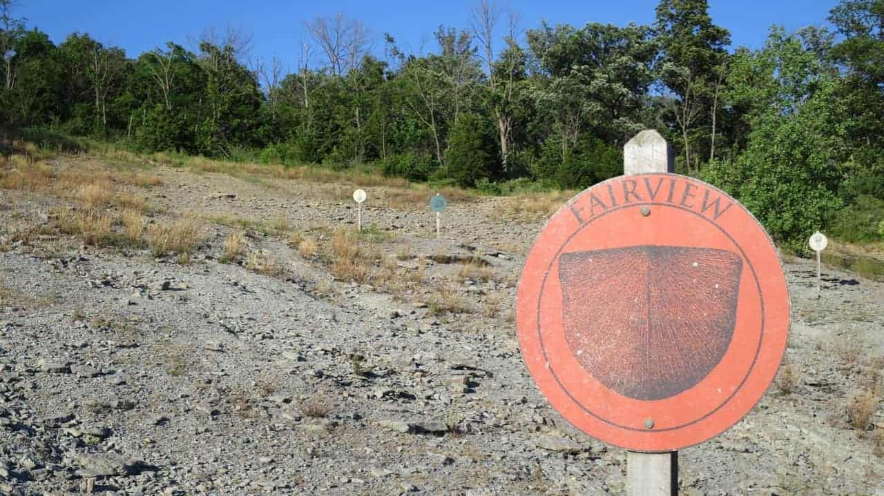 Educational Markers on the Hillside at Trammel Fossil Park