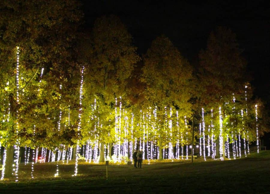 Cascading Lights at Antler Hill Village