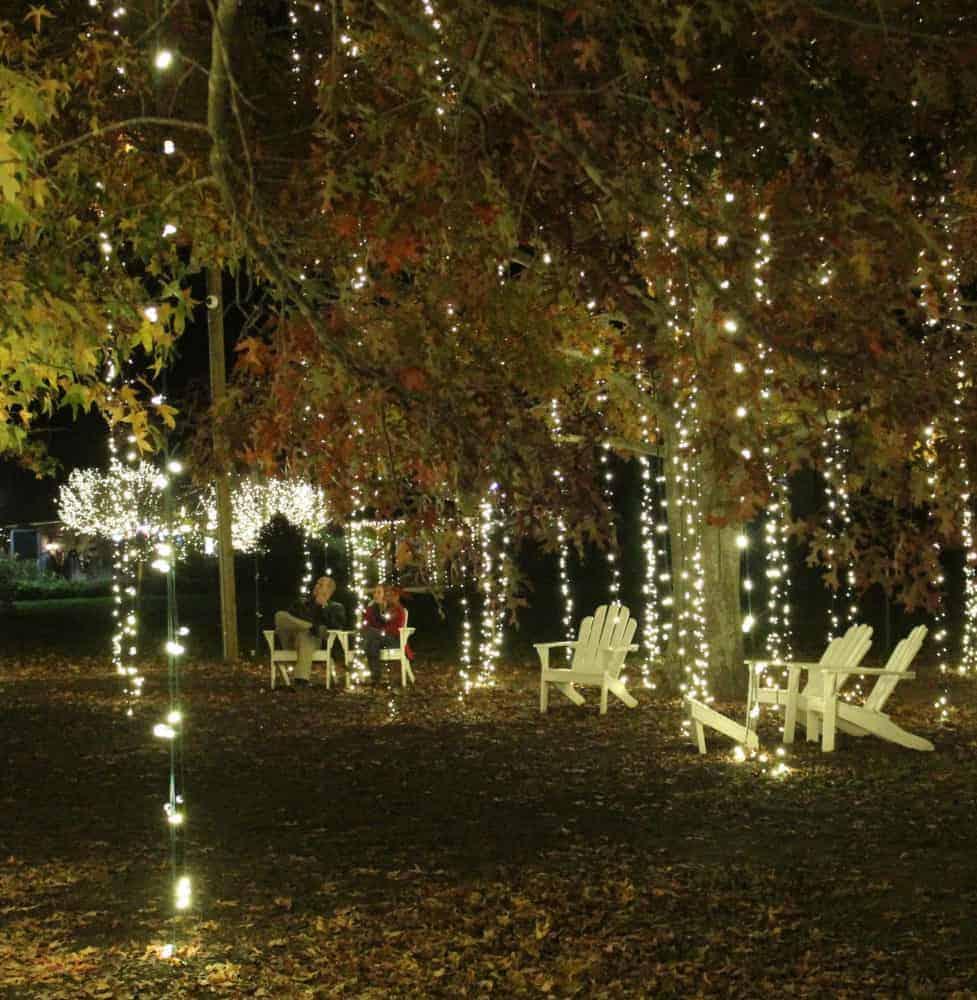 Cascading Lights at Biltmore Estate