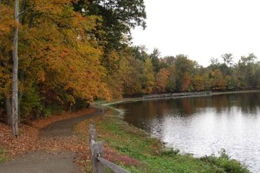 Sharon Woods in the Fall. Just one of the Great Parks of Hamilton County.