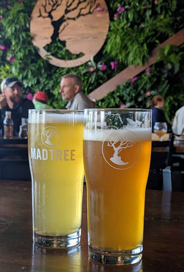 beers at madtree brewing