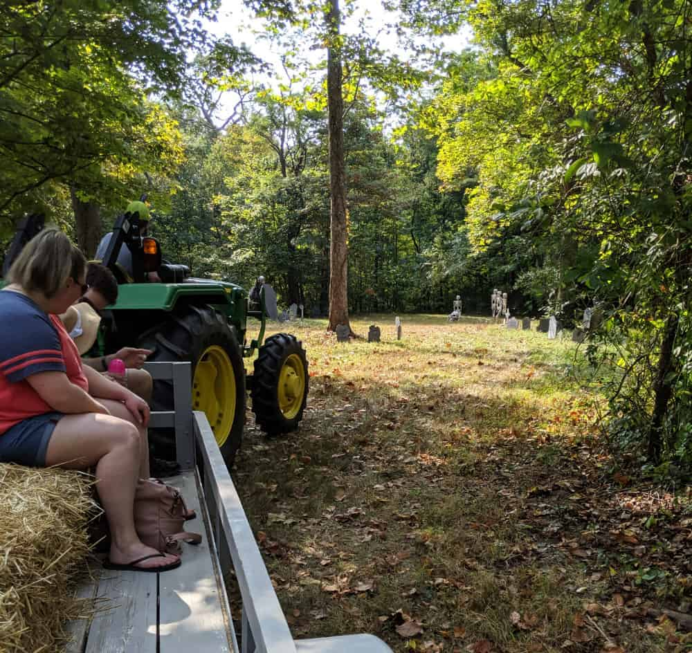 Taking a hayride through the woods at Shaw Farms