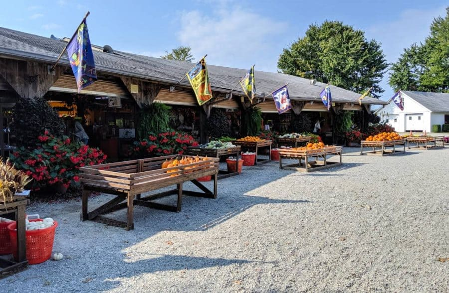 Farm Market at Shaw Farms