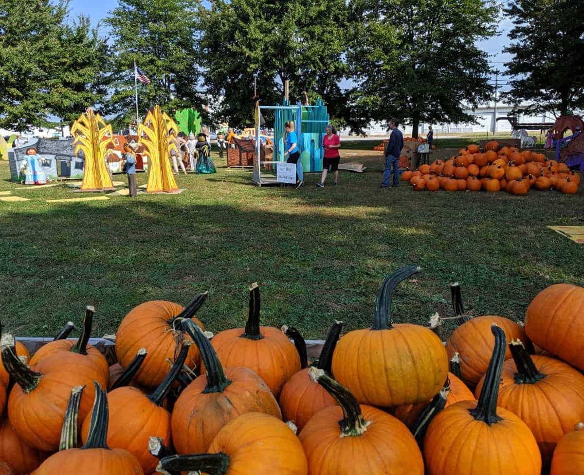 Pumpkins and Outdoor Play at Shaw Farms
