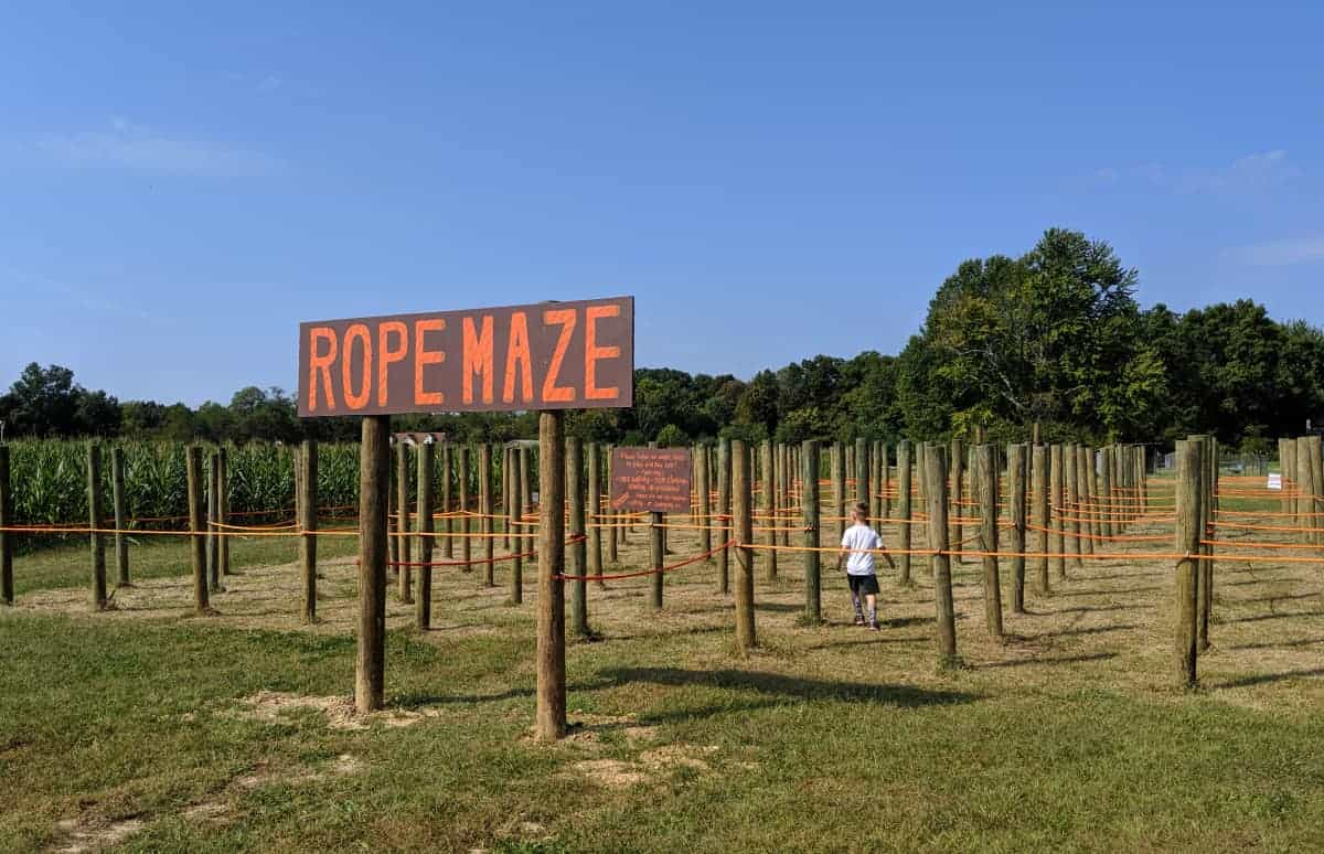 The Rope Maze, a new addition at Shaw Farms Fall Festival