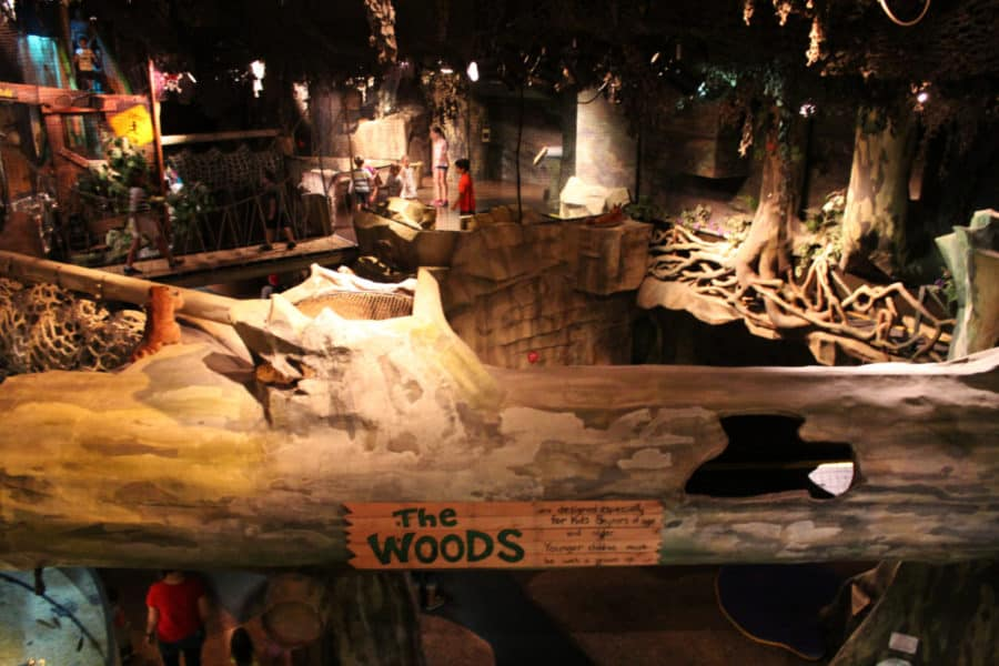 The Woods at the Children's Museum in Cincinnati