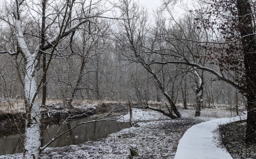 Snow on the trail at Kingfisher Trail  in Winton Woods