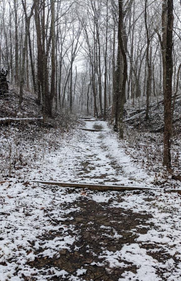 Some of the uphill portion of Kingfisher Trail at Winton Woods