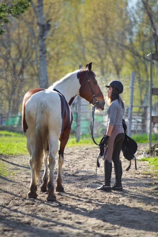 Horseback riding in Cincinnati, Ohio