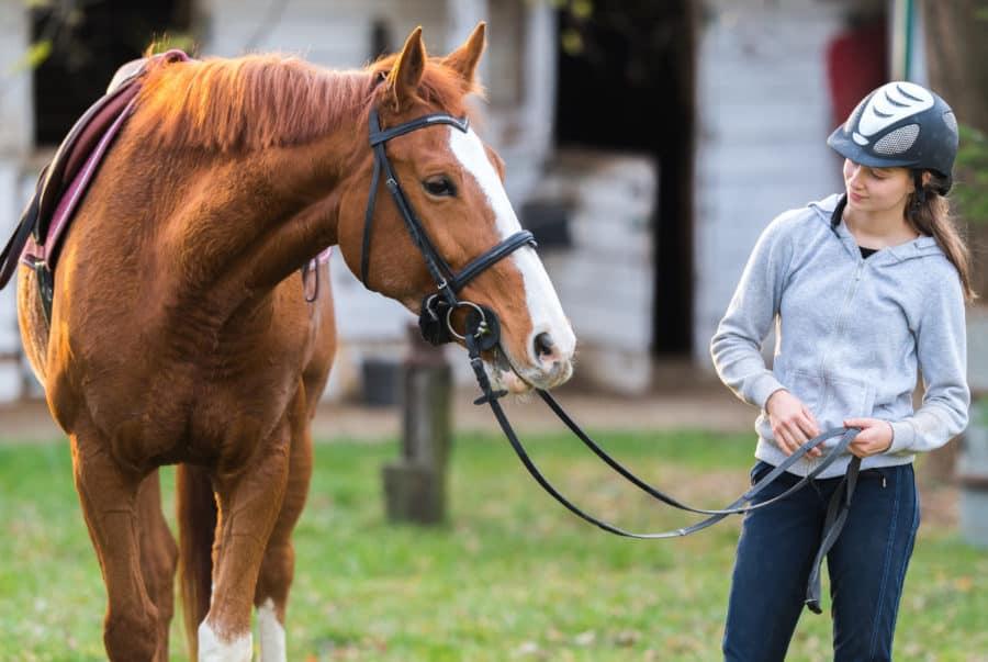 horseback riding in Ohio