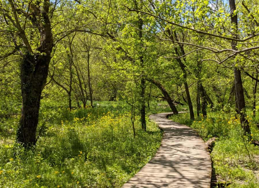 The boardwalk at Kingfisher Trail in Winton Woods
