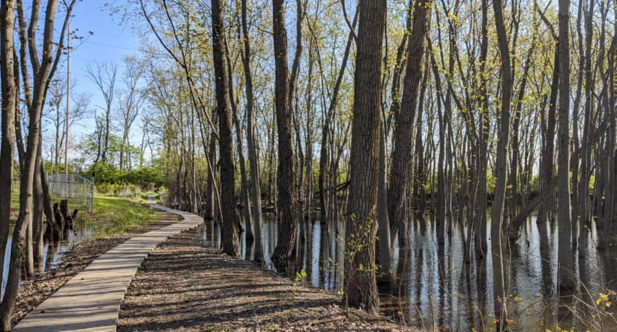 Gilmore Metropark boardwalk