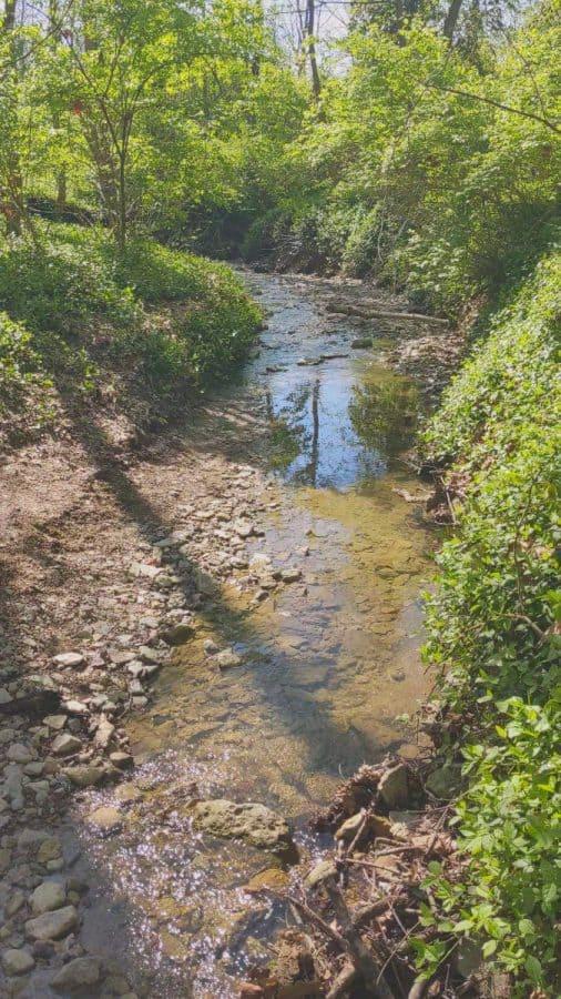 the creek at Caldwell Nature Preserve