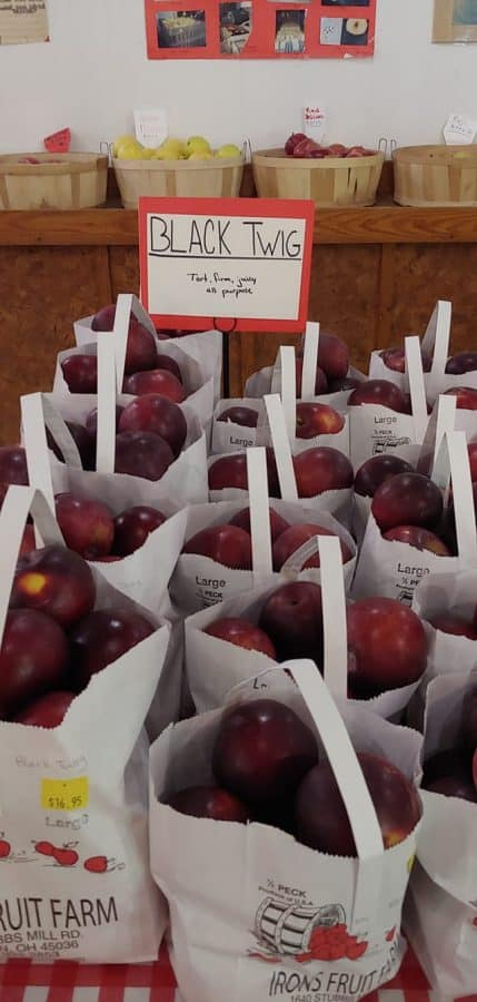 apples at Irons Fruit Farm