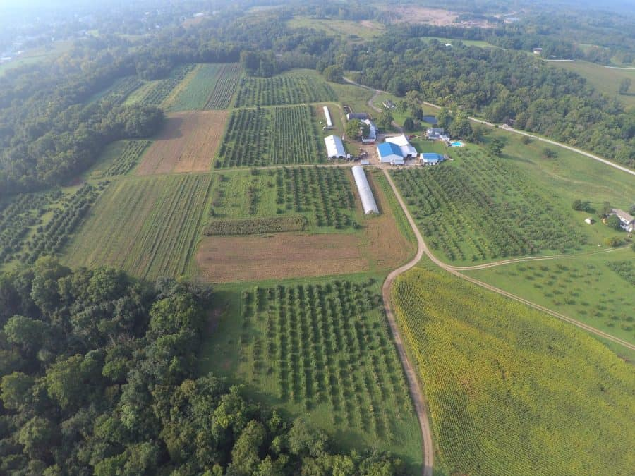 a great spot to pick apples - Wesler Apple Orchards in New Paris, Ohio