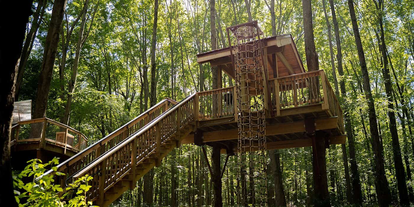tent platforms at Cannaley Treehouse Village