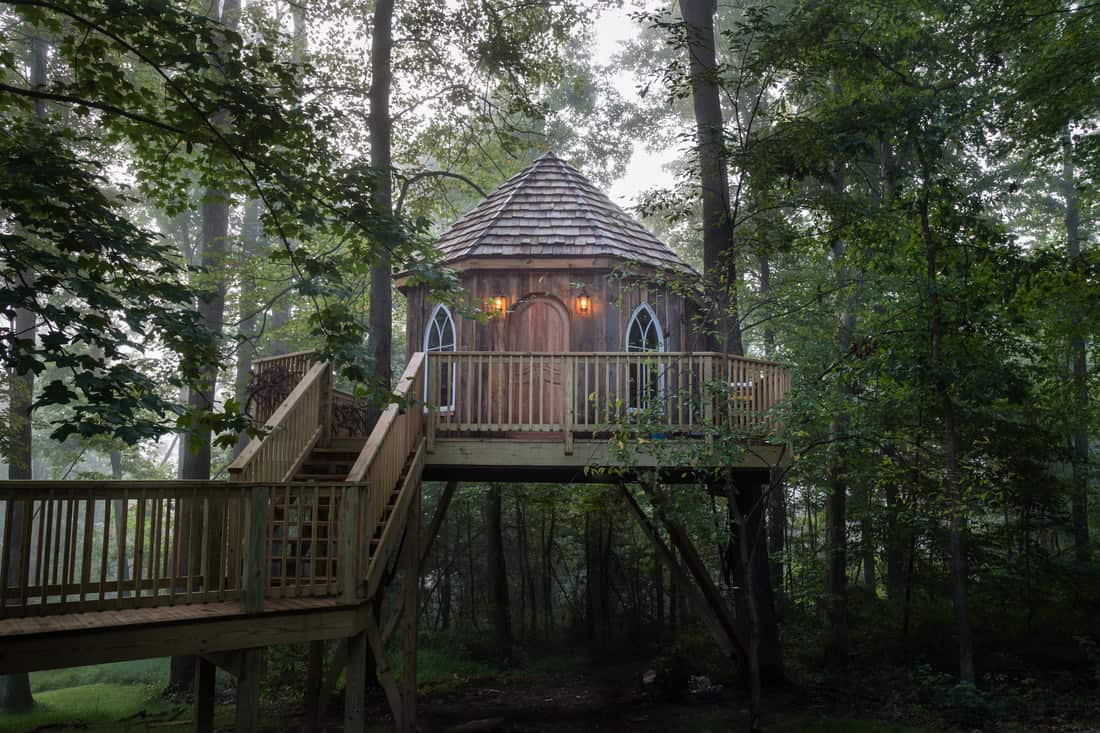 Treehouse at The Mohicans