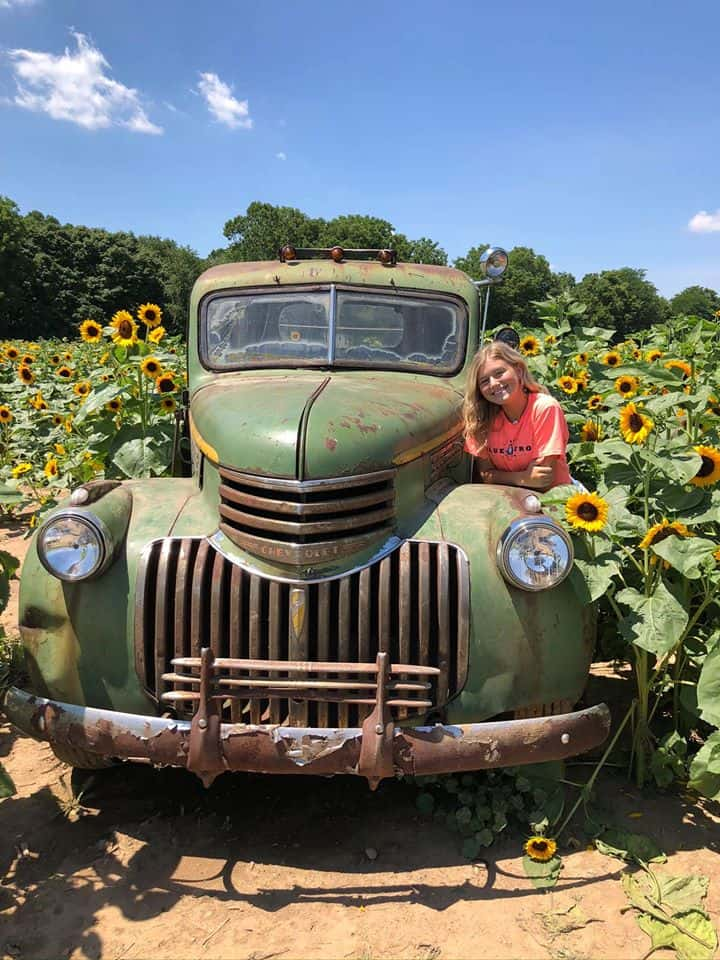 Chevy Truck at the Lynd Fruit Farm sunflower fields