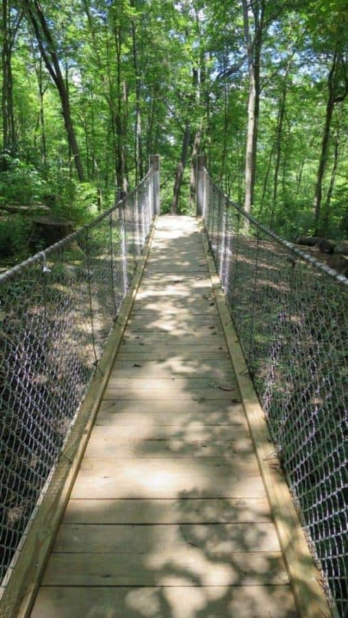 the bridge at Rentschler Park