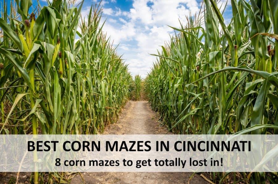 Kid Friendly Halloween Fun In Cincinnati October 2020 8 Corn Mazes to Get Lost In This Fall 2020 · 365 CINCINNATI