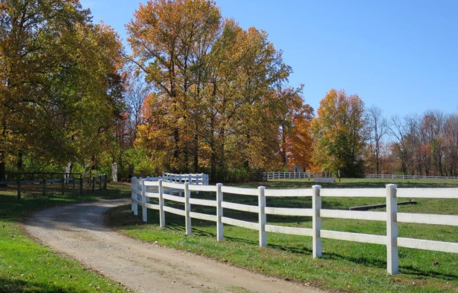 fall fun at parkys farm